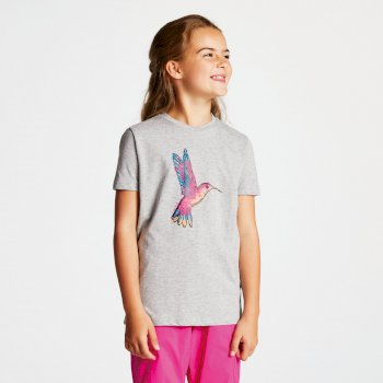 Kids' Frenzy Graphic T-Shirt Ash Bird