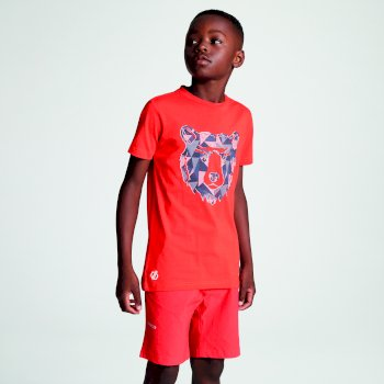 Kids' Frenzy Graphic T-Shirt Cajun Orange Bear