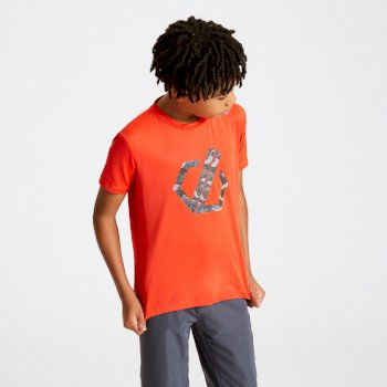 Kids' Rightful Graphic T-Shirt Trail Blaze