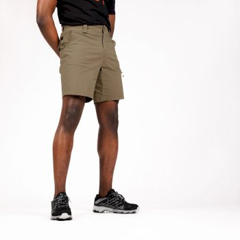 The Jenson Button Edit - Tuned In Offbeat Cargo Shorts Gold Sand