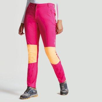 Pantalon Append Trouser PkFus/OrnBst