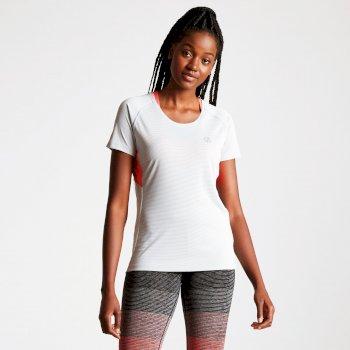 T-Shirt OSCILLATION Argent Grey