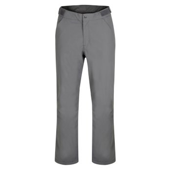 Men's Ream Waterproof Insulated Ski Pants Aluminium Grey